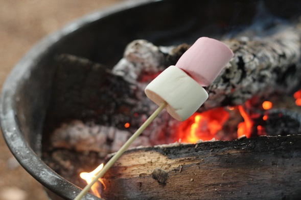 marshmellows2