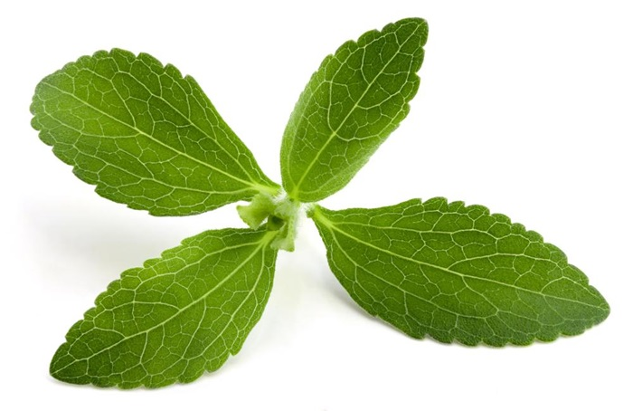 is-stevia-gezond-of-ongezond
