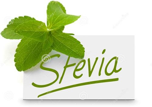 stevia-gezond-of-ongezond