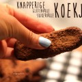 recept-knapperige-glutenvrije-koekjes-13
