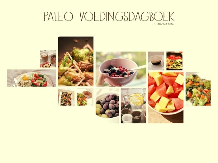 paleo-voedingsdagboek-voorkant