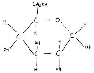 glucose-scheikunde - kopie