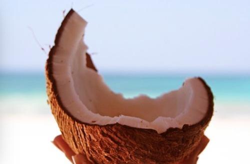 kokosvet-gezond-of-ongezond