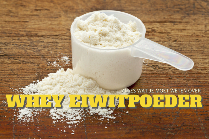 white powder of whey protein