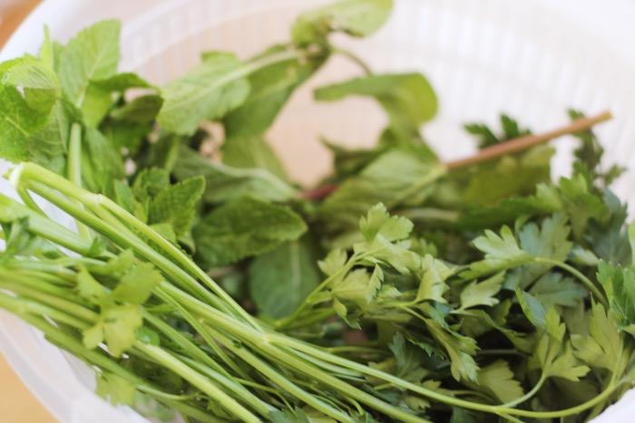 recept-regenboog-spring-rolls-1