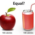 Calories-Explained-the-Truth-about-Calories-in-Calories-out