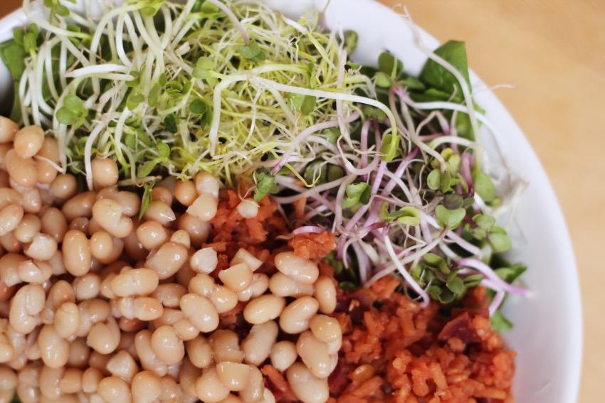 zelf-salade-buddha-bowl-maken-11