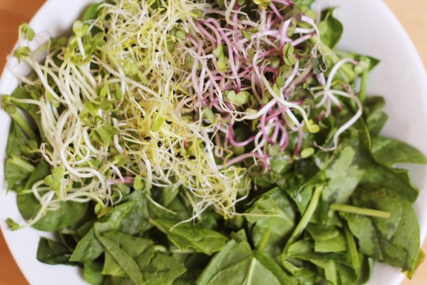 zelf-salade-buddha-bowl-maken-6