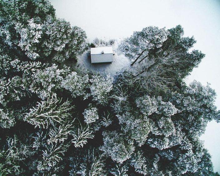 sneeuw-landschap