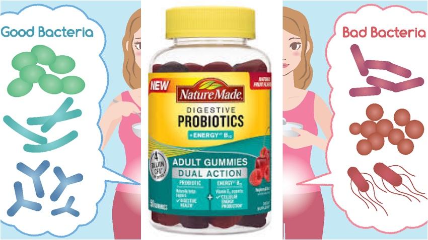 Alles Wat Je Moet Weten Over Probiotica En Mijn Ervaring Fitbeauty