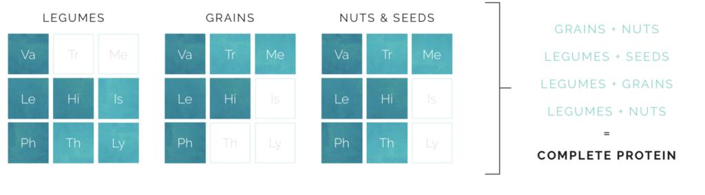 voedingsmiddelen met aminozuren